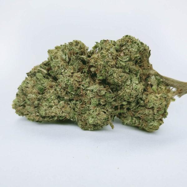 cannatonic fleur de cannabis légal
