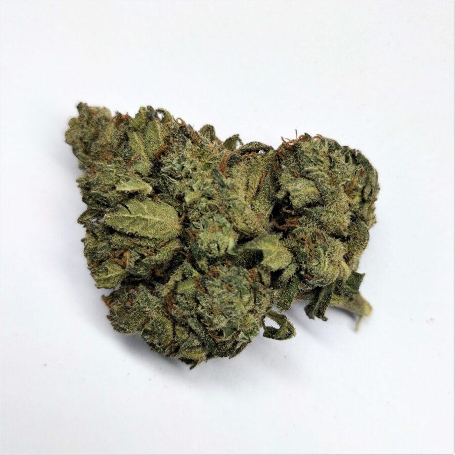 SILVER BUD - fleur de cannabidiol CBD