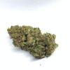 Gorilla Glue Fleurs de CBD Greenhouse CBDOO