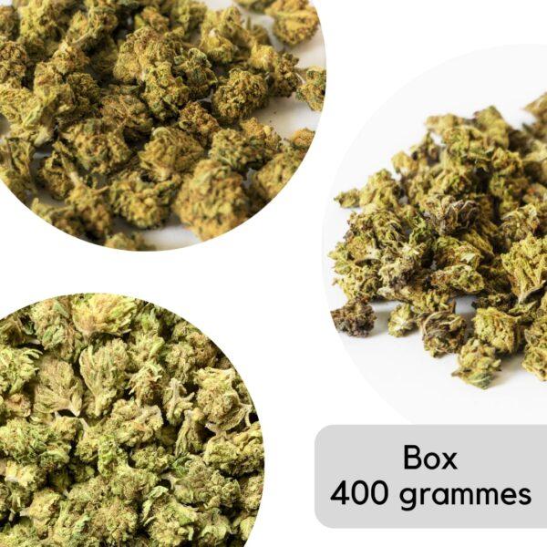 Mega box fleurs de CBD Small Buds